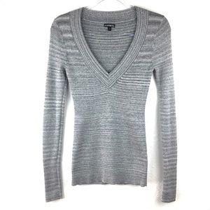 Express Metallic Silver V-Neck Long Sleeve Sweater